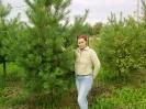 д.Семчино осень 2010 :: semchino2010_30